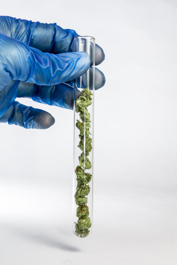 test-tube-filled-with-cannabis-mg-magazine